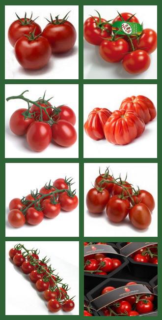 tomaten 39 t fruithoekske. Black Bedroom Furniture Sets. Home Design Ideas